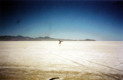 Circus artist doing a one-armed handstand in the desert